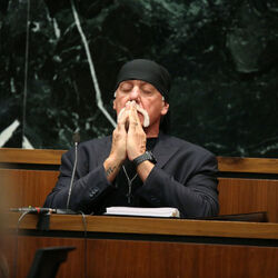 Billionaire Investor Peter Thiel Admits to Funding Hulk Hogan's Suit Against Gawker