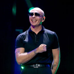 Florida's Tourism Department Paid Pitbull $1 Million To Promote The State In Music Video
