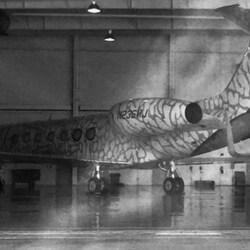 Michael Jordan's Private Jet Has An Elephant Print Paint Job