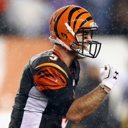 A.J. McCarron Is Filing A Grievance Against The Cincinnati Bengals