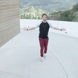 28-Year-Old Music Producer Zedd Gives A Tour Of His INSANE $16 Million Los Angeles Mansion