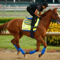 Kentucky Derby Winner Justify Is Self-Made Billionaire's Horse