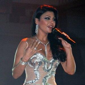 Haifa Wehbe Net Worth