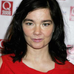 Bjork Net Worth