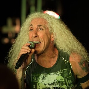 Dee Snider Net Worth