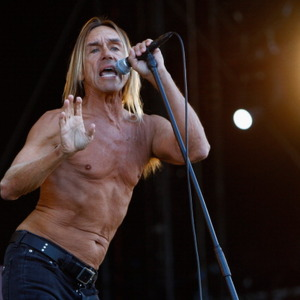 Iggy Pop Net Worth