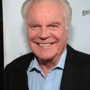 Robert Wagner Net Worth