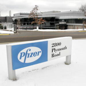 Pfizer Net Worth