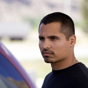 Michael Pena Net Worth