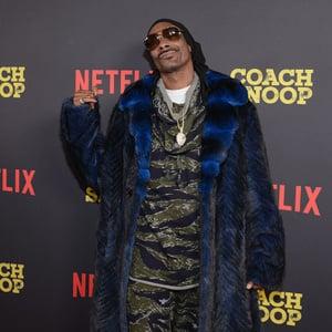 Snoop Lion Net Worth