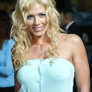 Torrie Wilson Net Worth