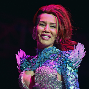 Ivy Queen Net Worth