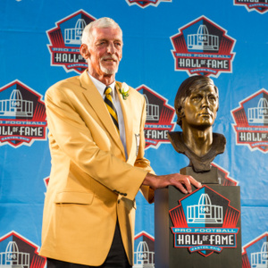 Ray Guy Net Worth