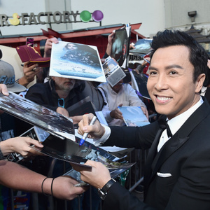 Donnie Yen Net Worth