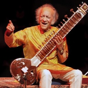 Ravi Shankar Net Worth
