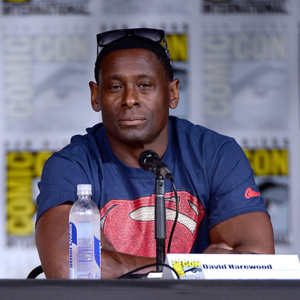 David Harewood Net Worth