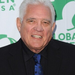 G.W. Bailey Net Worth