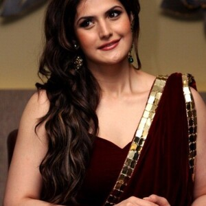 Zarine Khan Net Worth