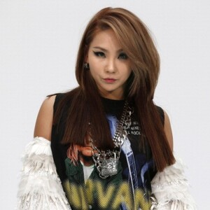 CL Net Worth