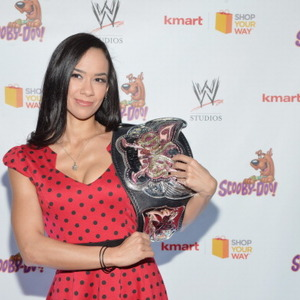 AJ Lee Net Worth
