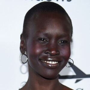 Alek Wek Net Worth