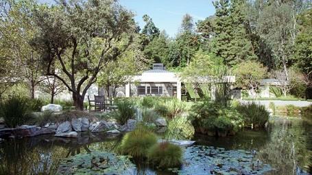 Koi pond behind Ellen DeGeneres and Portia De Rossi's Beverly Hills home
