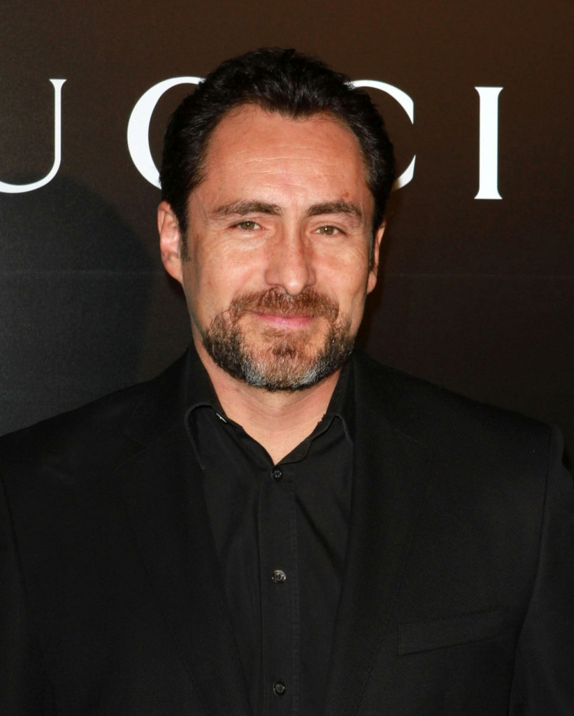 How much is Demian Bichir worth?