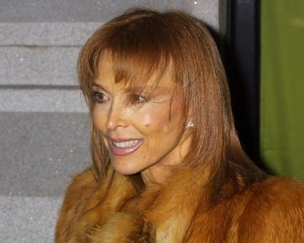 Tina louise celebrity net worth