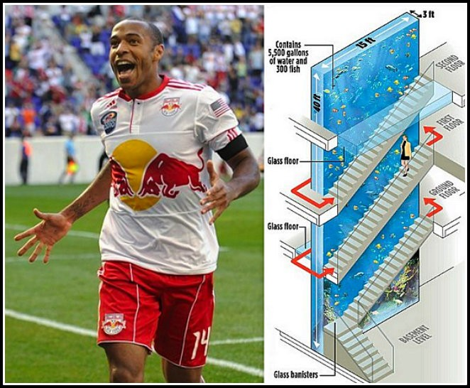 Thierry Henry House