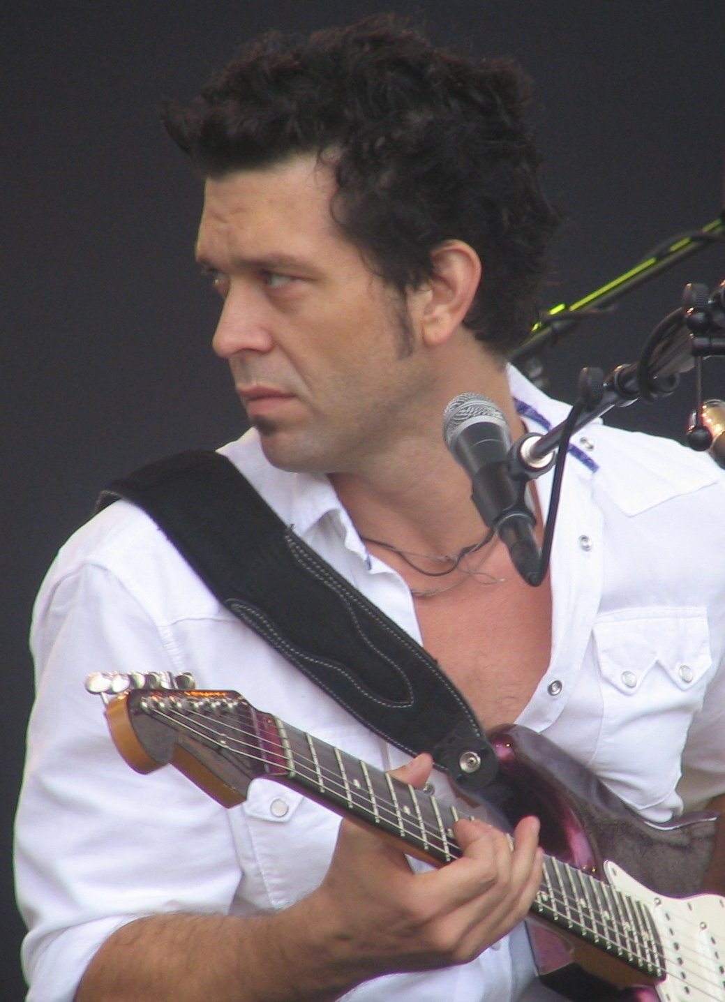 Doyle Bramhall Ii Net Worth Celebrity Net Worth