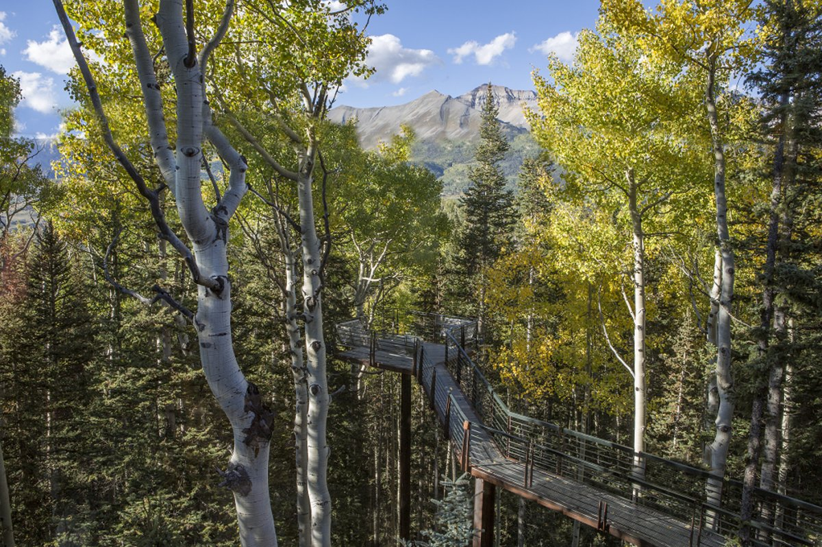 a-35-foot-high-walkway-leads-through-the-trees