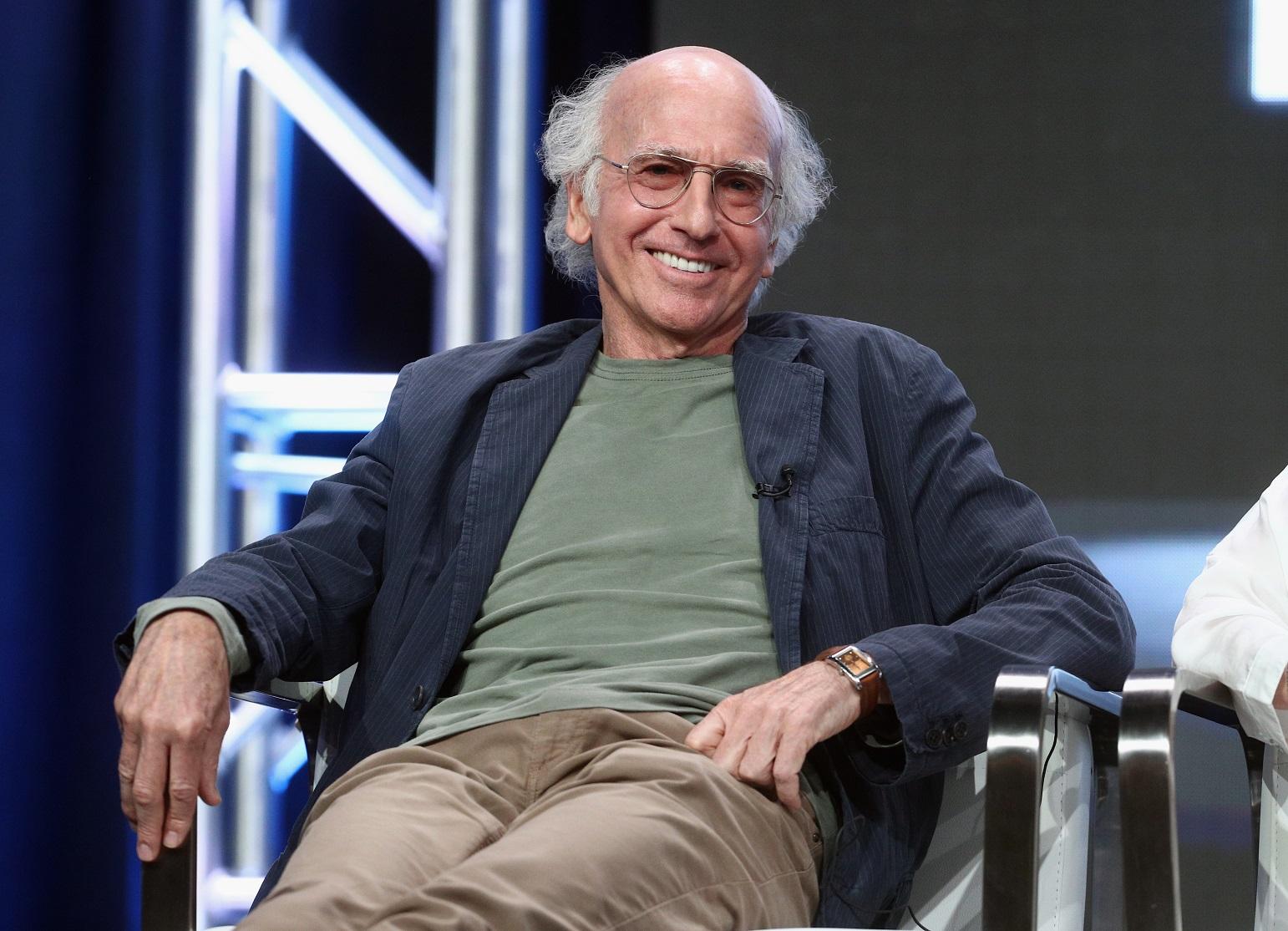 Larry David Wealth